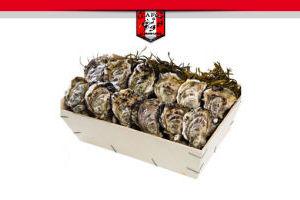 Commande d'huîtres pour les fêtes