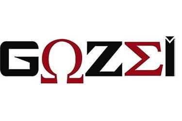I.G.S. Intrusion Gozzi Sécurité